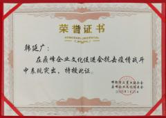 抗击疫情荣誉证书